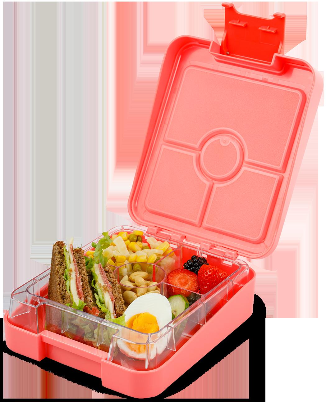 Schmatzfatz Snackbox easy – coral